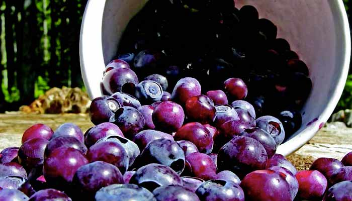 New Ideas for Regional Favorites: Pacific Northwest, So Berry Good
